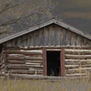 Settler Cabin Poster
