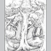 Shady Forest Of Trees Poster