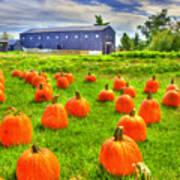 Shaker Pumpkin Harvest Poster
