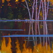 Shaw Lake Reflections Poster by Susan McCullough