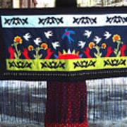 Shawl - Lost Birds Return Poster