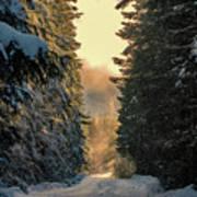 Shawnigan Winter Road Poster