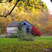 Shed In Autumn Poster