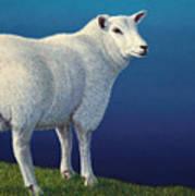 Sheep At The Edge Poster