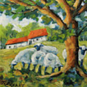 Sheep On The Farm Poster