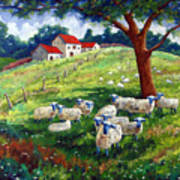 Sheeps In A Field Poster