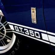 Shelby Mustang G T 350 Cobra Poster