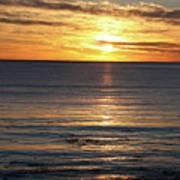 Shell Beach Sunset Poster