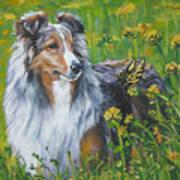Shetland Sheepdog Wildflowers Poster