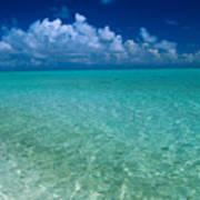 Shimmering Ocean Poster