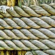 Ship Rope Anchored Poster