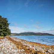 Shoreline On The Kyles Of Bute Poster