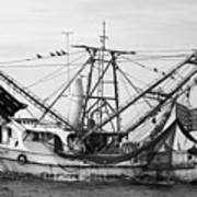 Shrimp Boat In Black And White Poster