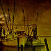 Shrimpboats In Apalachicola  Poster