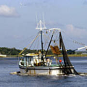 Shrimper With Birds On Wire Poster