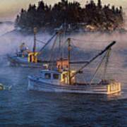 Shrouded In Morning Sea Smoke Poster