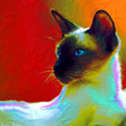 Siamese Cat 10 Painting Poster