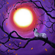 Siamese Cat In Purple Moonlight Poster