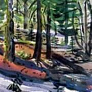 Sierra Snowdrifts Poster