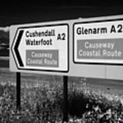 Signposts For The Causeway Coastal Route At Carnlough Between Cushendall And Glenarm County Antrim Poster by Joe Fox