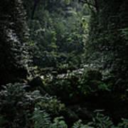 Silence Is Round Me   - Mokulehua Poster