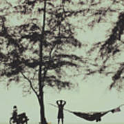 Silhouette Of A Young Men With Crossed Hands Above His Head Camping Hammocking In The Nature Poster