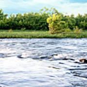 Silky Susquehanna River Poster