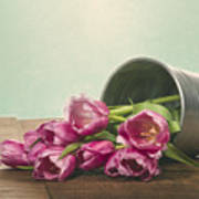 Silver Container With Fresh Tulips Poster