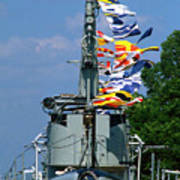 Silversides Flags Poster