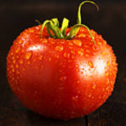 Single Fresh Tomato With Dew Drops Poster