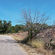 Single Lane Road In The Hill Country Poster