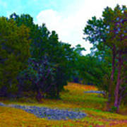 Sister's Hill Country Backyard Poster