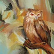 Sitting Owl Poster