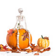 Skeleton Sitting On Pumpkin Poster