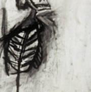 Skeleton Study Poster
