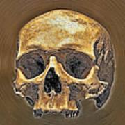 Skull. Poster