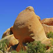 Skull Rock Joshua Tree National Park California Poster by Christine Till