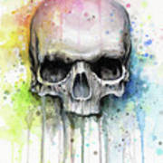 Skull Watercolor Rainbow Poster