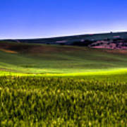 Sliver Of Sunlight On The Palouse Hills Poster