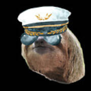 Sloth Aviator Glasses Captain Hat Sloths In Clothes Poster
