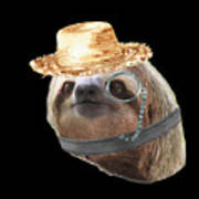 Sloth Monacle Straw Sloths In Clothes Poster
