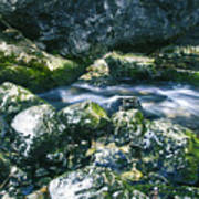 Small Freshwater Spring Under Rocks Poster