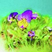 Small Group Of Violets Poster