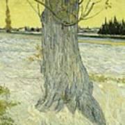 Small Pear Tree In Blossom Arles, April 1888 Vincent Van Gogh 1853  1890 Poster