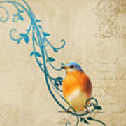 Small Vintage Bluebird With Leaves Poster