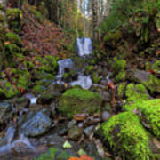 Small Waterfall At Lower Lewis River Falls Poster