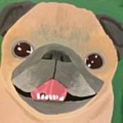 Smiling Senior Pug Poster