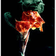 Smoke In My Mind - 3 Poster
