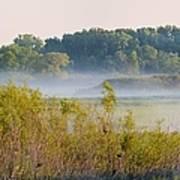 Smokey Marshland Poster