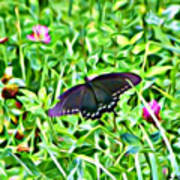 Smoky Mountain Butterfly  Poster